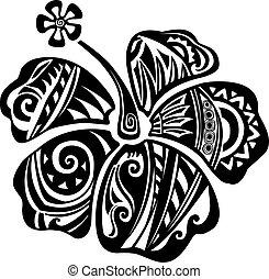 hibisco, blanco, negro