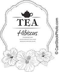 hibisco, carcade, vetorial, tea., illustration.