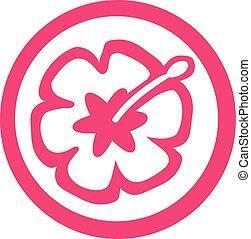 hibisco, flor, en, círculo