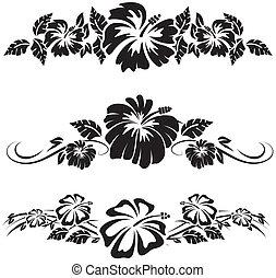 hibisco, flores, hawaiano