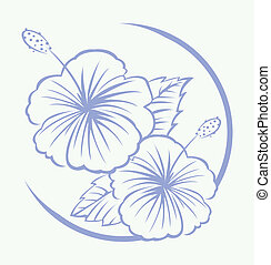 hibisco, símbolo, flor