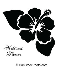 hibisco, vector, flor, ilustración