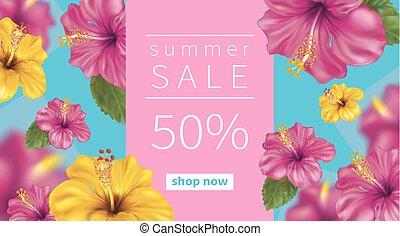 hibiscus, été, fond