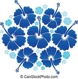 hibiscus, 1, thème, image