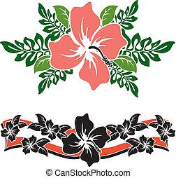 hibiscus, 4