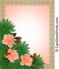 Hibiscus and butterflies background - Image and illustration...