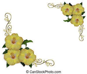 hibiscus, bloemen, grens, ontwerp