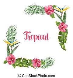 hibiscus, branches, fleur, paumes, cadre, exotique, flowers., paradis, feuilles, oiseau