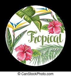 hibiscus, branches, fleur, paumes, feuilles, exotique, flowers., fond, paradis, oiseau