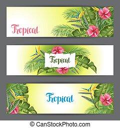 hibiscus, branches, fleur, paumes, feuilles, exotique, flowers., paradis, bannières, oiseau