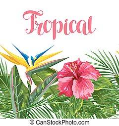 hibiscus, branches, fleur, paumes, feuilles, seamless, exotique, flowers., paradis, frontière, oiseau