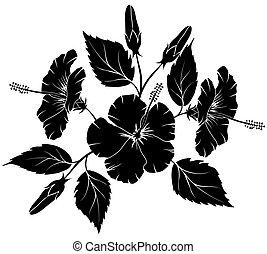 Hibiscus, floral element for design, illustration