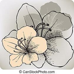 hibiscus, fleur, hand-drawing., vecteur, illustration.