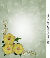 Hibiscus Flowers border design