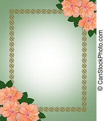 hibiscus, grens, uitnodiging