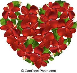 hibiscus, hart, bloemen, gemaakt