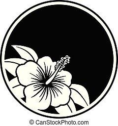 hibiscus, insigne