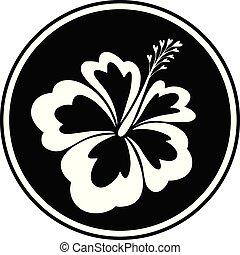 hibiscus, insigne, résumé
