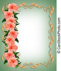 hibiscus, mariage, frontière florale