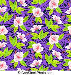 hibiscus, modèle, fleurs blanches, exotique