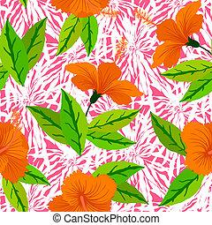 hibiscus, modèle, fleurs oranges, exotique