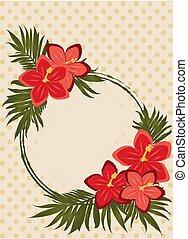 hibiscus, mode, félicitation, vendange, illustration, fleurs, vecteur, carte