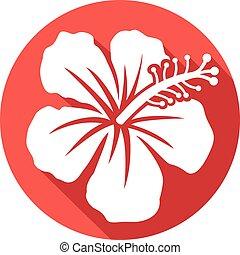 hibiscus, plat, fleur, icône