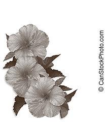 hibiscus, sépia, mariage, ou, fête, invitation