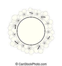 hibiscus, sharon, fleur, contour, rose, syriacus, -, couronne, bannière