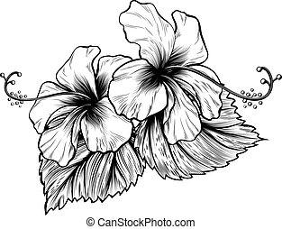 hibiscus, style, graver, woodcut, vendange, fleurs, gravé