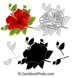 Hibiscus tropical flower red color natural outline and silhouette  vector.eps