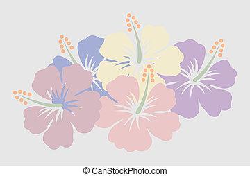 Hibiscus - bleach vector illustration of hibiscus flowers