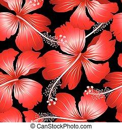 hibiskus, mönster, seamless, tropisk, svart fond, blomningen, röd