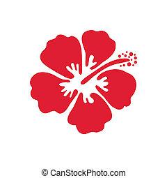 hibiskus, vektor, blomma, illustration