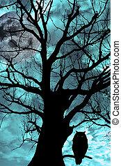 hibou, ancien, arbre, nuit, perché, éclairé par la lune