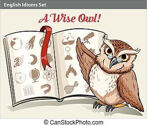 hibou, anglaise, sage, idiom