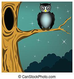 hibou, arbre