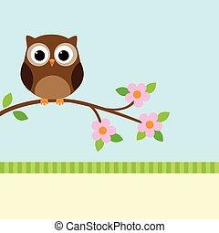 hibou, branche, fleurir