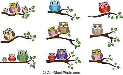 hibou, coloré, séance, arbre, vecteur, branche