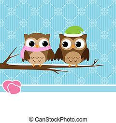 hibou, couple, hiver