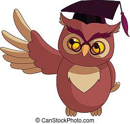 hibou, dessin animé, sage, c, remise de diplomes