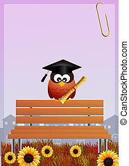 hibou, diplômé