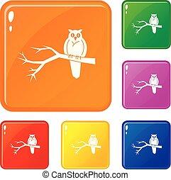 hibou, ensemble, icônes, couleur, arbre, vecteur