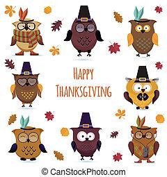 hibou, ensemble, jour, mignon, thanksgiving