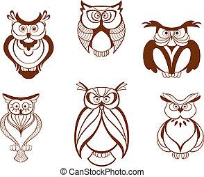 hibou, ensemble, oiseaux, dessin animé