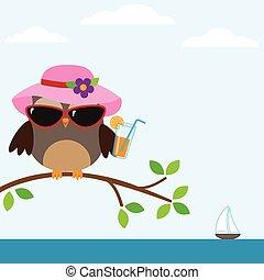 hibou, lunettes soleil