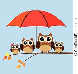 hibou, parapluie, famille