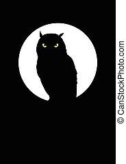 hibou, pleine lune