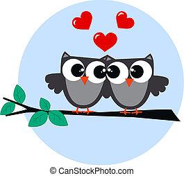 hiboux, amour, deux