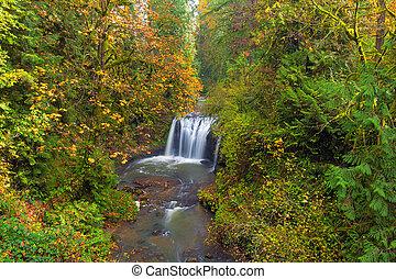 Hidden Falls in Autumn
